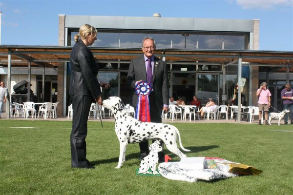 Solbo's Kayo Best in Show Clubmatch NCDH 2012
